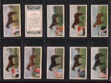 Tobacco cigarette cards Derby Entrants Horse Racing